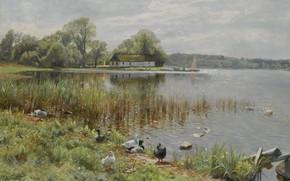 Picture 1937, Danish painter, Peter Merk Of Menstad, Peder Mørk Mønsted, Danish realist painter, Ducks at …