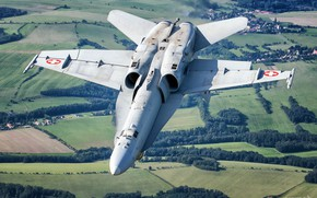Picture Field, Forest, Fighter, The Swiss air force, F/A-18 Hornet, HESJA Air-Art Photography