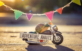 Picture road, macro, light, background, the inscription, street, plate, snail, motorcycle, driver, biker, bike, motorcyclist, flags, …