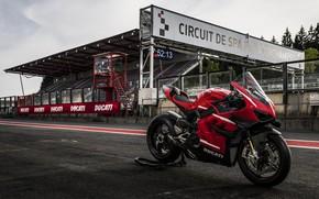 Picture ducati, race track, Superleggera V4