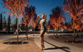 Picture dress, park, A Diakov George