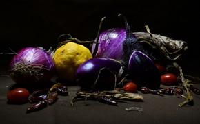 Picture blue, the dark background, lemon, bow, eggplant, pepper, still life, sharp, vegetables, tomatoes