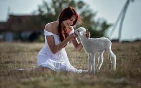 Picture girl, mood, meadow, lamb, Goran Dobožanov