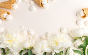 Picture flowers, background, peonies, marshmallows