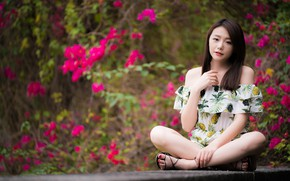 Picture girl, pose, Asian, sitting