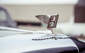 Picture Bentley, Wings, Logo, Letter