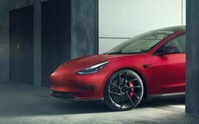 Picture wheel, Tesla, the front part, Novitec, Model 3, 2019