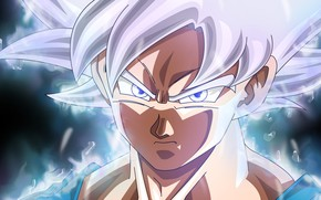 Picture goku, ultra instinct, ultra instinct perfected, dragon ball super