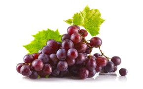 Picture leaves, red, grapes, white background