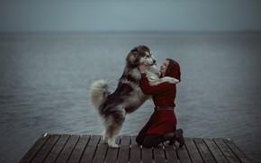 Picture water, girl, animal, dog, friends, dog, mostok, Александр Калинин