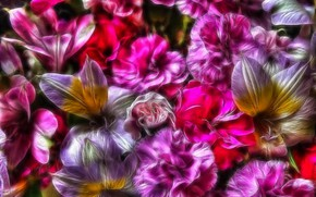 Picture flowers, abstraction, photo
