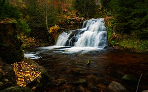 Picture autumn, forest, river, waterfall, Germany, cascade, Germany, Baden-Württemberg, Baden-Württemberg, Black Forest, The black forest