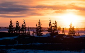 Picture winter, forest, the sky, the sun, clouds, rays, light, trees, sunset, nature, hills, winter, the …