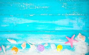 Picture sand, beach, background, Board, star, shell, summer, beach, vintage, wood, sand, marine, starfish, seashells