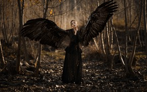 Picture girl, wings, angel