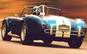 Picture cars, rasing, Shelby Cobra, grtat