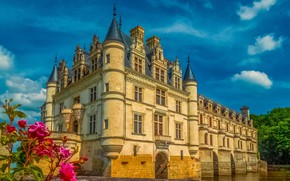 Picture flowers, France, the castle of Chenonceau