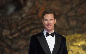 Picture smile, butterfly, Benedict Cumberbatch, Benedict Cumberbatch, bow tie, British actor