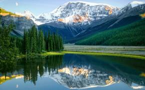 Wallpaper trees, mountains, lake