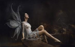 Picture girl, angel, Maria Nita Vlad