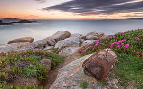 Picture sea, the sky, clouds, flowers, stones, mesh, shore, pink, Spain, Zadok, fishing