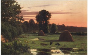 Picture trees, nature, meadows, herons, haystacks