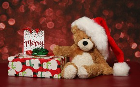 Picture winter, holiday, box, gift, toy, bear, Christmas, bear, New year, plush, bow, red background, Teddy, …