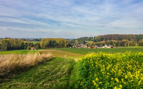 Picture road, greens, field, autumn, forest, the sky, grass, clouds, trees, flowers, hills, village, field, home, …