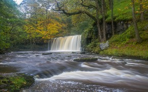 Picture forest, trees, river, England, waterfall, England, Wales, Wales, Brecon Beacons National Park, National Park Brecon …