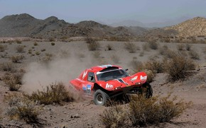 Picture red, movement, desert, rally, rally, shrub, Buggy, Fast&Speed