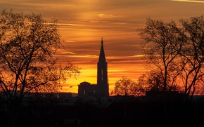 Picture the sky, trees, France, tower, home, glow, the plane, silhouettes, Strasbourg, Strasbourg