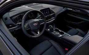 Picture Cadillac, interior, sedan, four-door, 2020, CT4-V