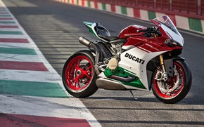 Picture motorcycle, bike, Ducati, 2018, Panigale, Final Edition, 1299, Panigale R