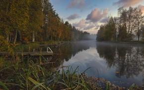 Picture autumn, forest, landscape, nature, fog, river, bridges