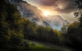 Picture summer, mountains, nature, morning