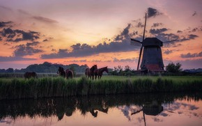 Picture Holland, Morning, mist, Traditional Windmill