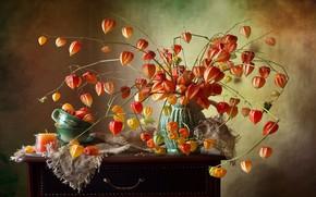 Picture Flowers, Composition, Vase, Świeczka, Miechunki