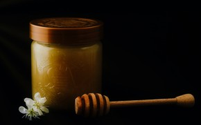 Picture light, spoon, Bank, black background, honey