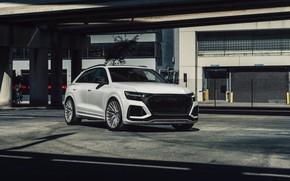 Picture Audi, White, VAG, RSQ8