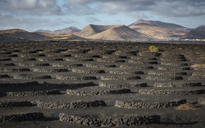 Picture Spain, Canary Islands, Lanzarote
