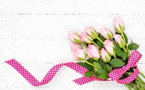 Picture roses, bouquet, tape, pink, pink, roses, ribbon