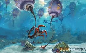 Picture the ocean, corals, creatures, Subnautica