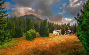 Picture field, autumn, forest, the sky, grass, clouds, light, mountains, branches, house, the slopes, home, ate, …