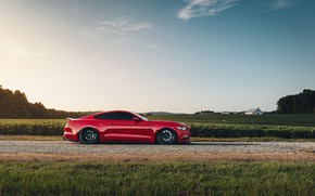 Picture Mustang, Ford, side view, 2018, Mustang GT, by Jimmy Zhang
