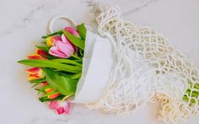 Picture paper, mesh, bouquet, tulips
