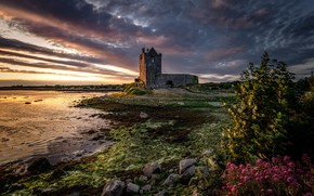 Picture Sunset, Ireland, Galway, Dunguaire, Dunguaire Castle