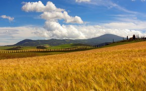 Picture autumn, summer, the sky, clouds, trees, mountains, nature, house, blue, hills, field, rye, dal, slope, …