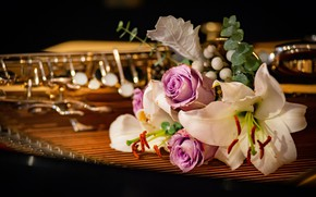 Picture flowers, the dark background, Lily, roses, bouquet, pipe, musical instrument, bokeh, composition, string musical instrument, …