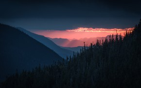 Picture forest, the sky, clouds, trees, sunset, mountains, nature, the evening, USA, White Mountains