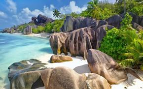 Picture sea, stones, palm trees, the ocean, rocks, Seychelles, La Digue island